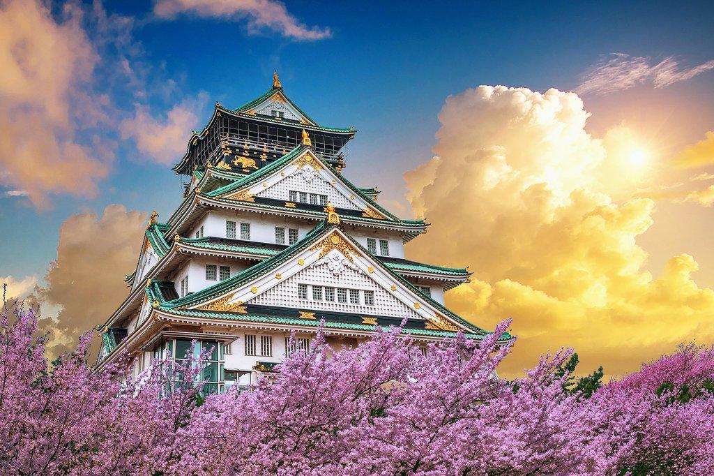 Osaka Castle With Cherry Blossoms at Sunset, Osaka, Japan