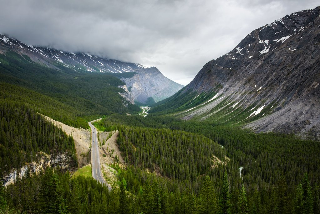 Icefields Parkway and Cirrus Mountain