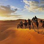 Camel Riders in the Sahara Desert