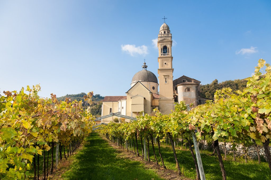 A church amid the vineyards, Valpolicella wine region