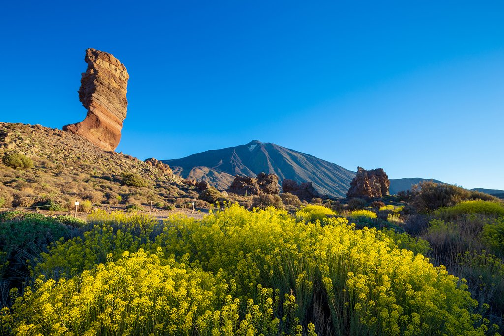 Rugged Views of Teide in Tenerife