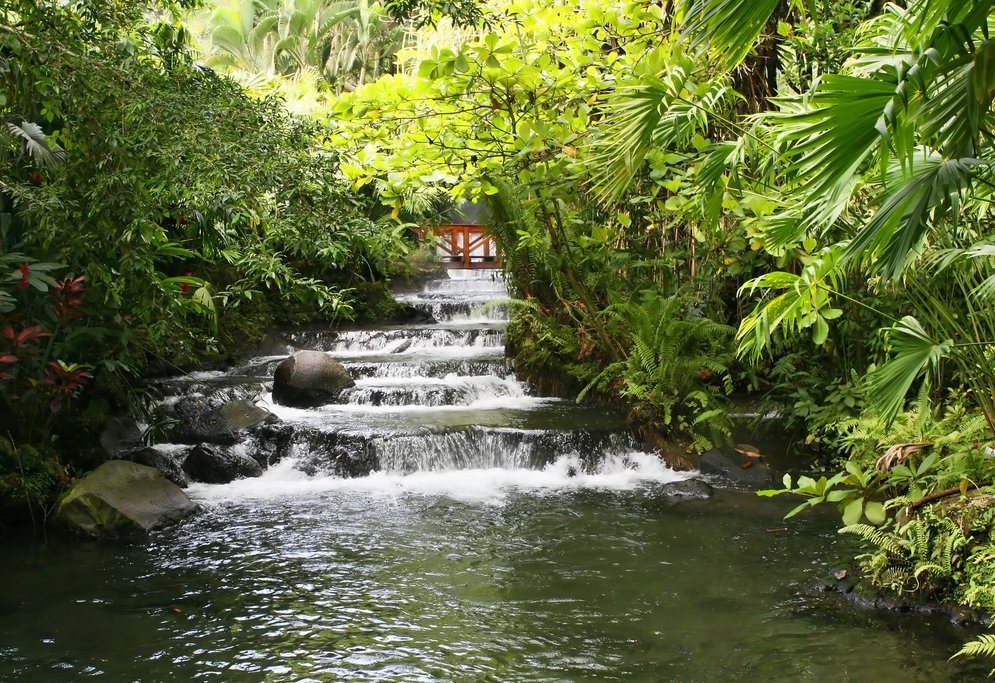 The natural hot springs at Tabacón