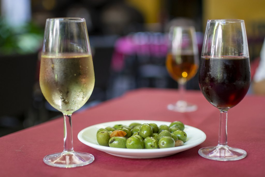 Wine tasting in Basque country