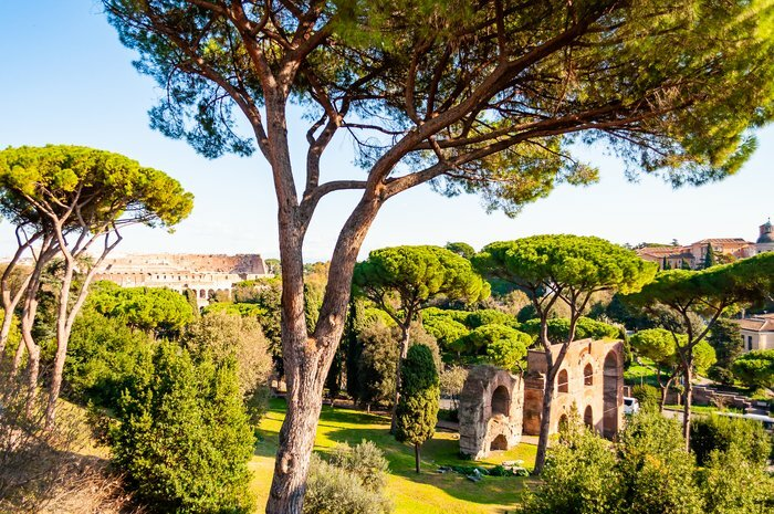 Discover Italian History from Ancient Rome to the 20th Century