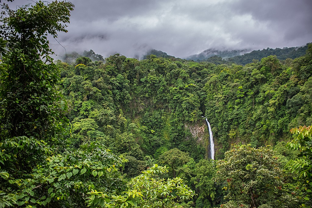 The beautiful La Fortuna Waterfall.