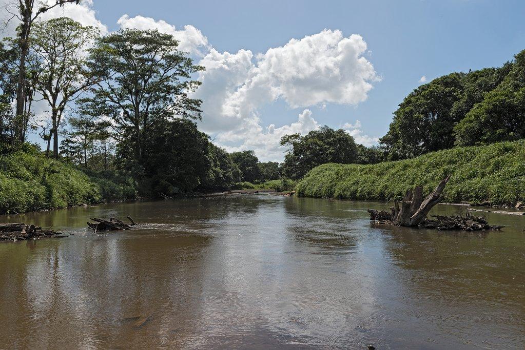 Tortuguero River Costa Rica