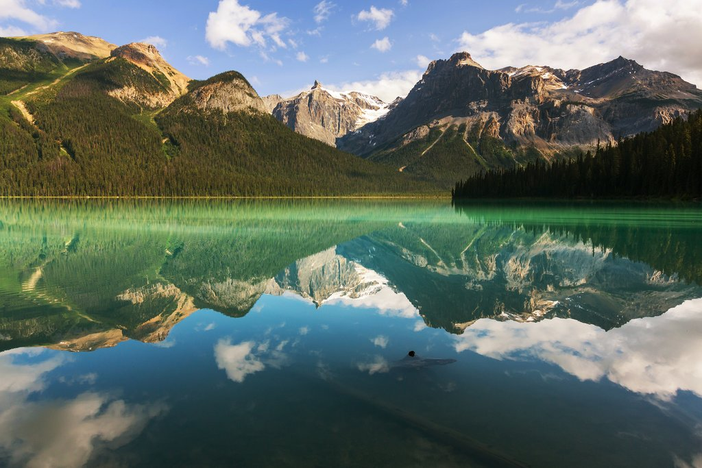 Serene Emerald Lake in Yoho National Park