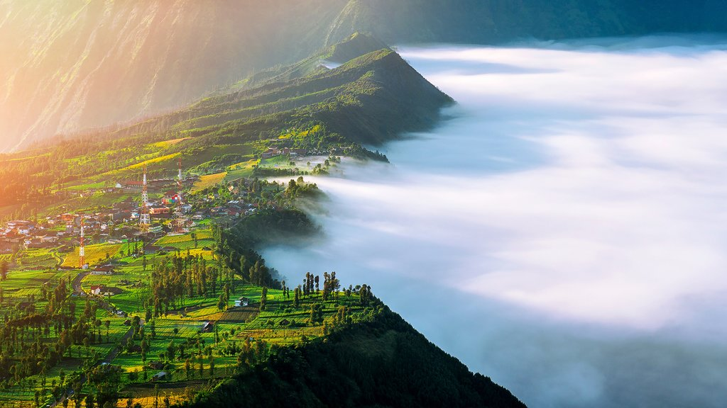 Indonesia - Java - Cemoro-Lawang-Village-At-Mount Bromo