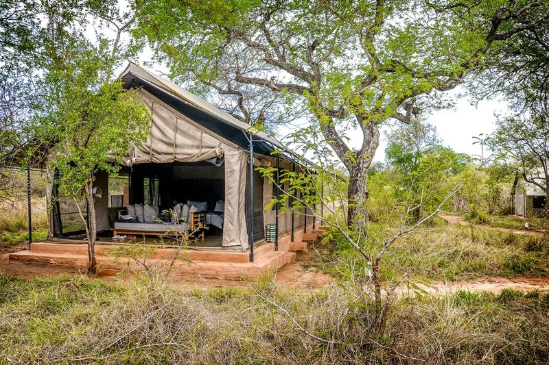 The tented camp at Manyeleti Game Reserve