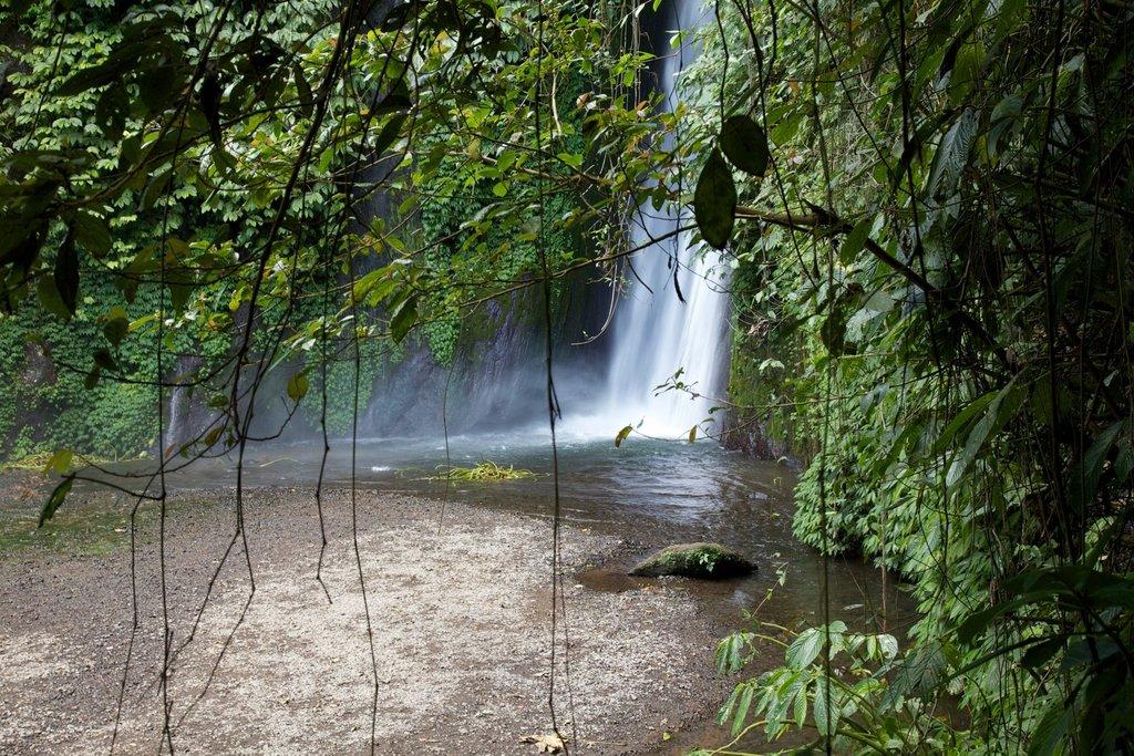 Swim in a majestic hidden waterfall