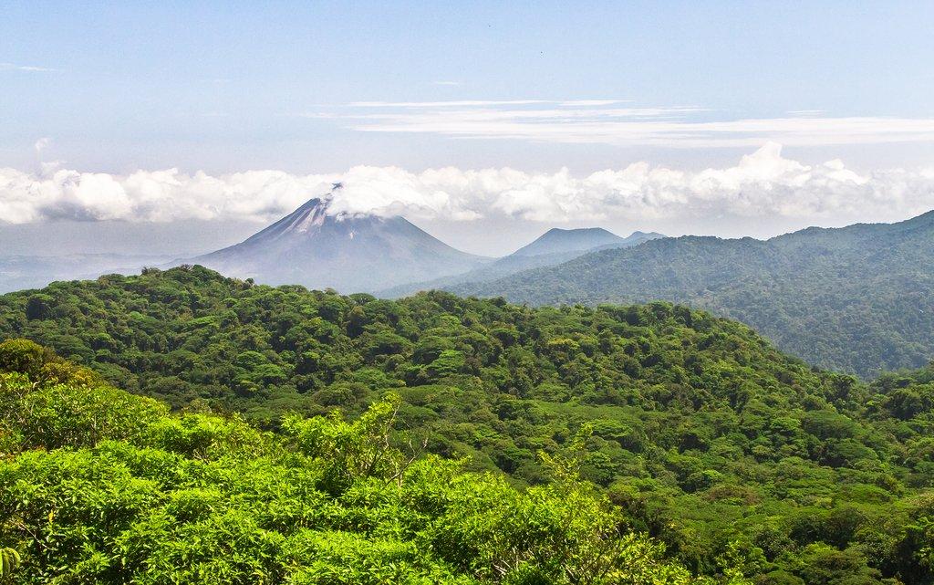 Jungle canopy near Arenal