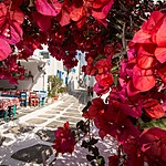 Flower-filled streets of Little Venice