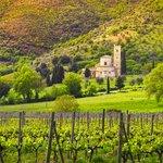 Sant'Antimo Abbey near Montalcino