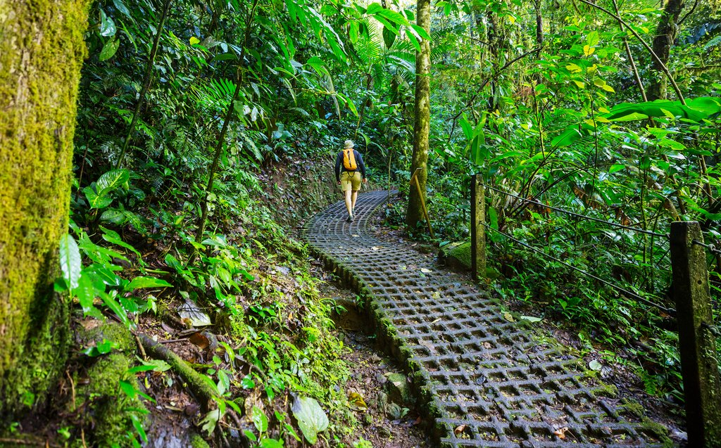 Hiking trail in Arenal National Park