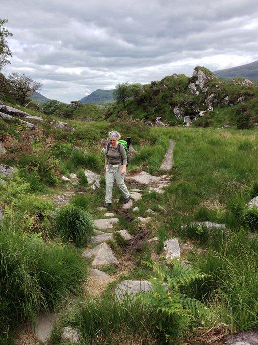Pilgrim Mountains Hike