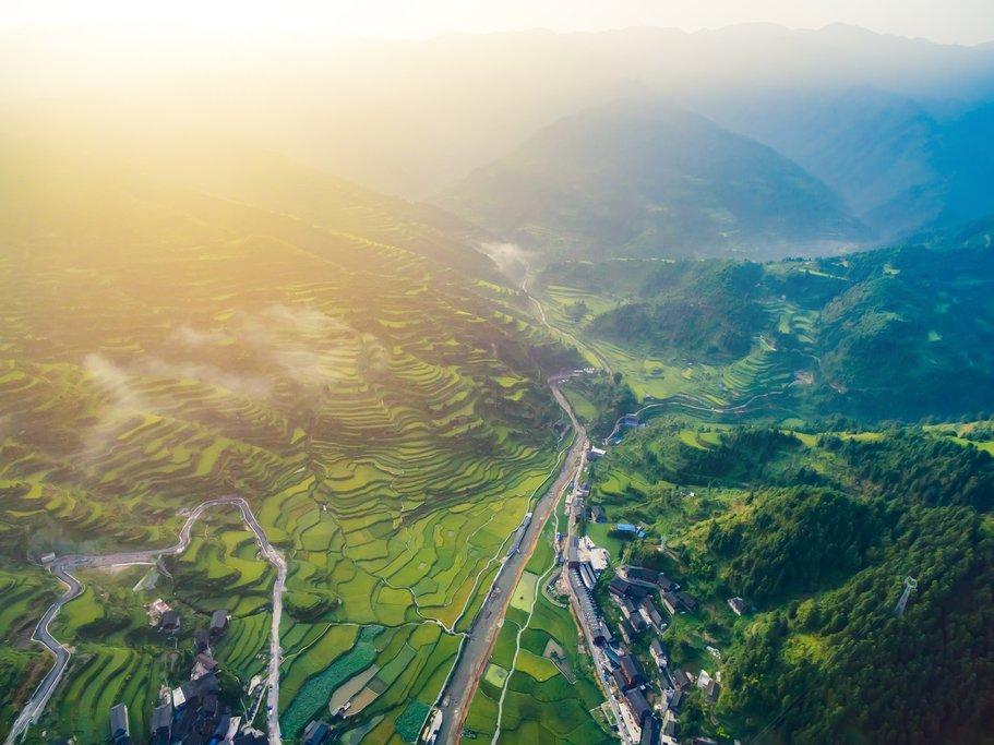 Rice Fields in Guizhou