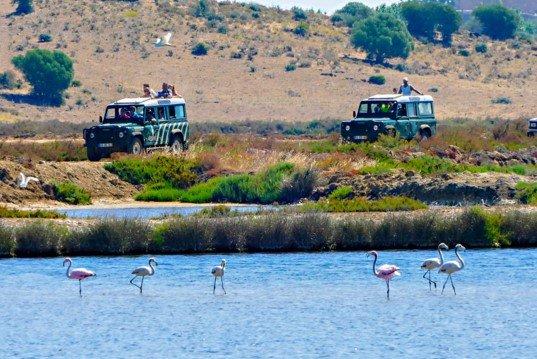 Jeep Safari Tour in the Algarvian Countryside