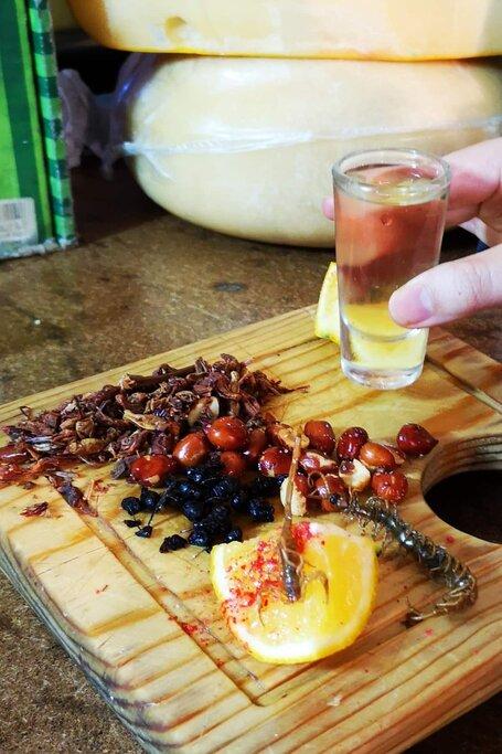Spirits of Mexico. Pulque Mezcal, & Tequila