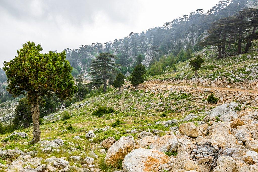 Lycian Mount Olympus