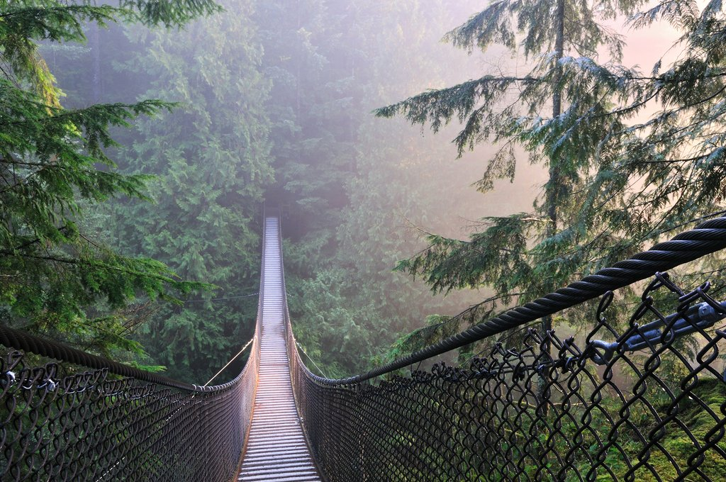 Lesser known Lynn Canyon is the perfect place to escape the crowds