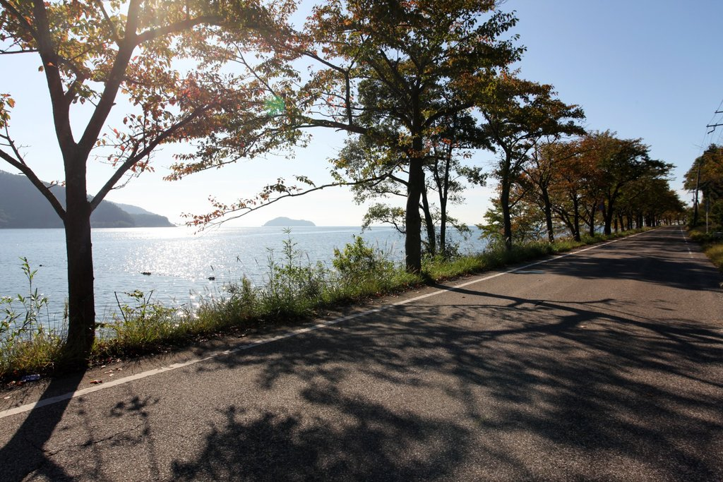 Lakeshore cycling