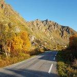Scenic Drive Around Senja