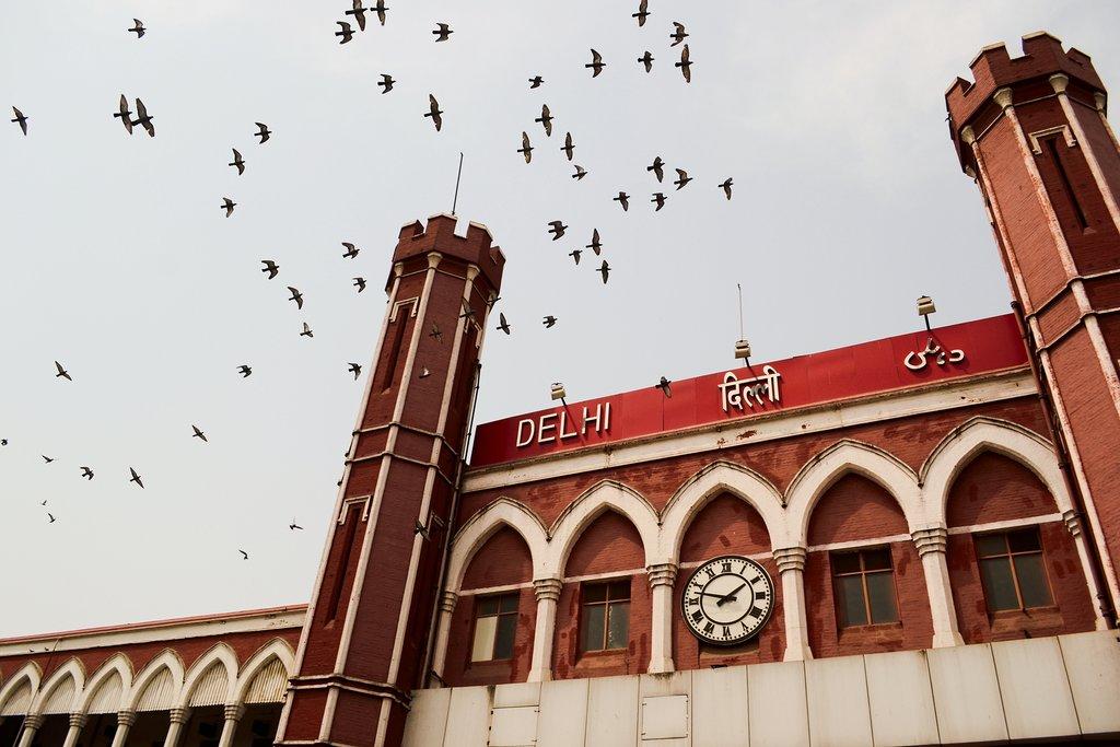 Birds flying over Delhi Junction railway station