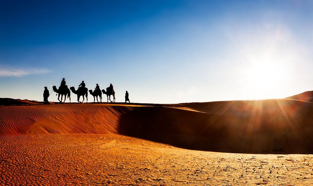 Camel caravan at sunset in Erg Chebbi, Morocco