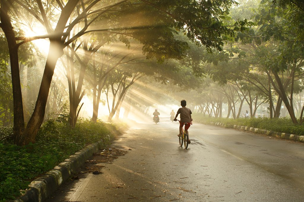 Go on an early morning cycling tour