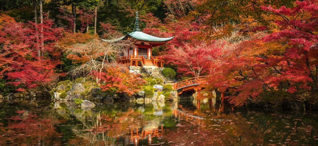 Beautiful Kyoto in Autumn