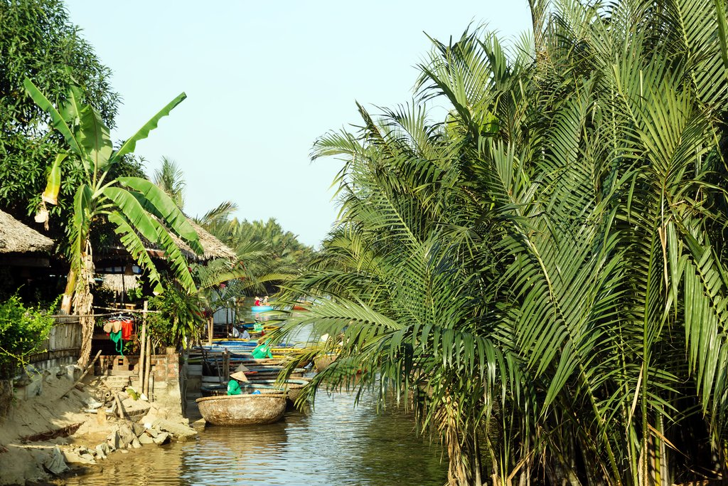 Row along the village of water coconut