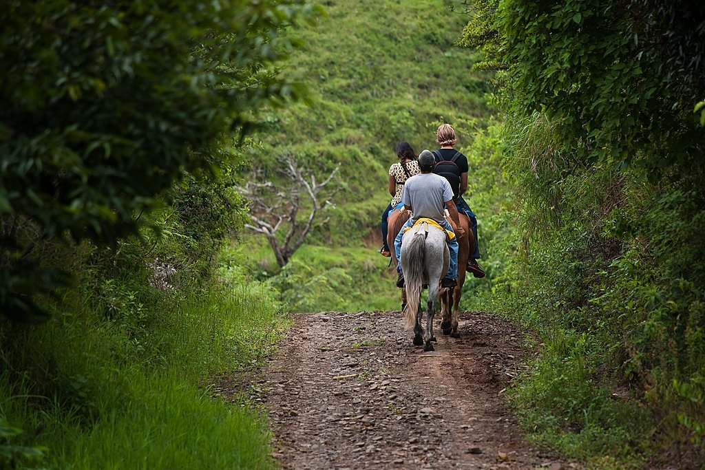Horseback riding through the jungle in La Fortuna