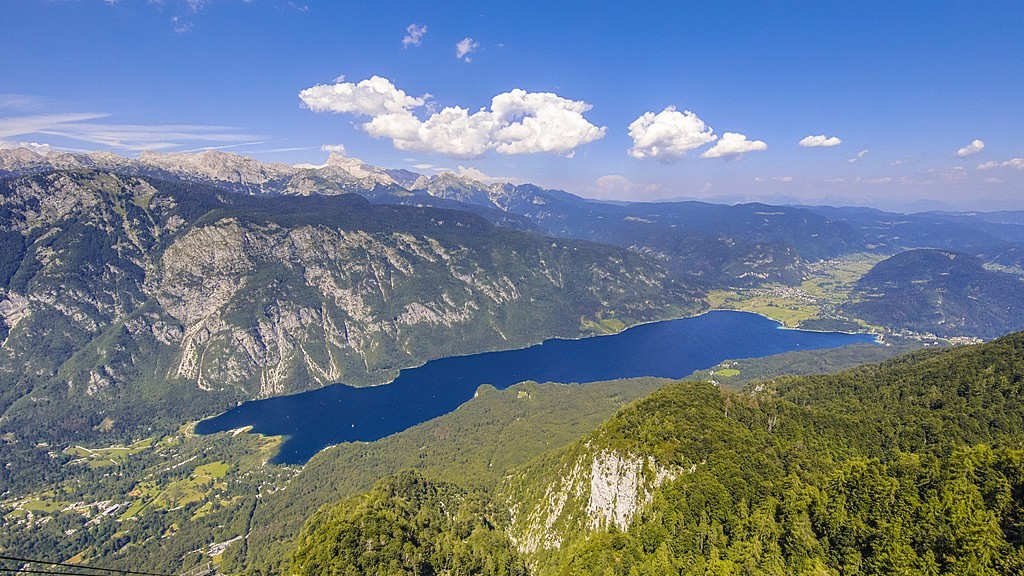 Lake Bohinj from above