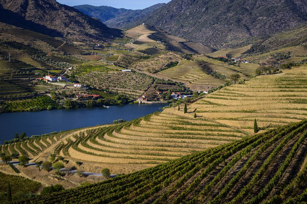 The beautiful scenery of the Douro Valley