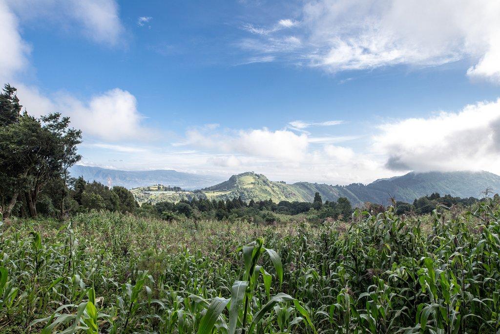 Landscape Near Pacaya Volcano