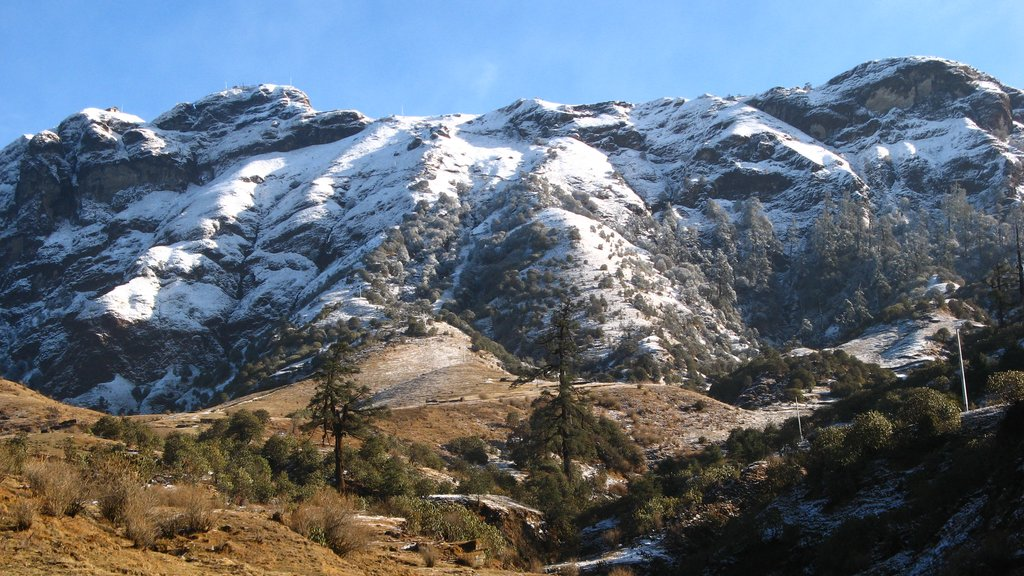 Views on the snowy ridge