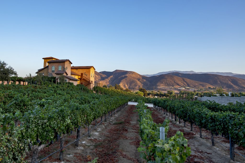 Sunny days in Temecula's wineries