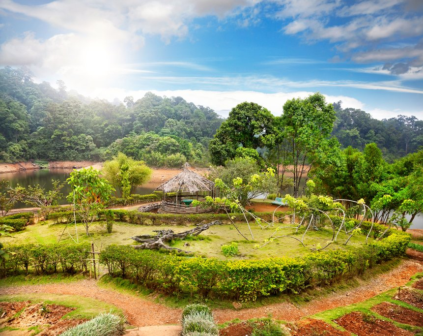 A garden in Periyar National Park