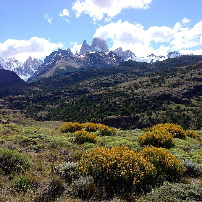Goodbye Patagonia