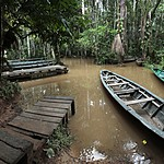 Dugout canoes for the waterway tours