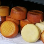 Wheels of Pag island cheese