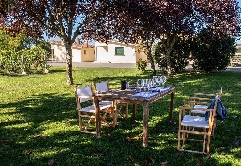 Wine Tasting in La Rioja