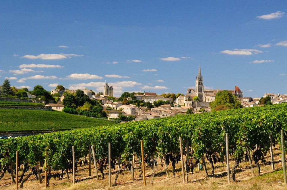 Vineyards surrounding Saint Emilion