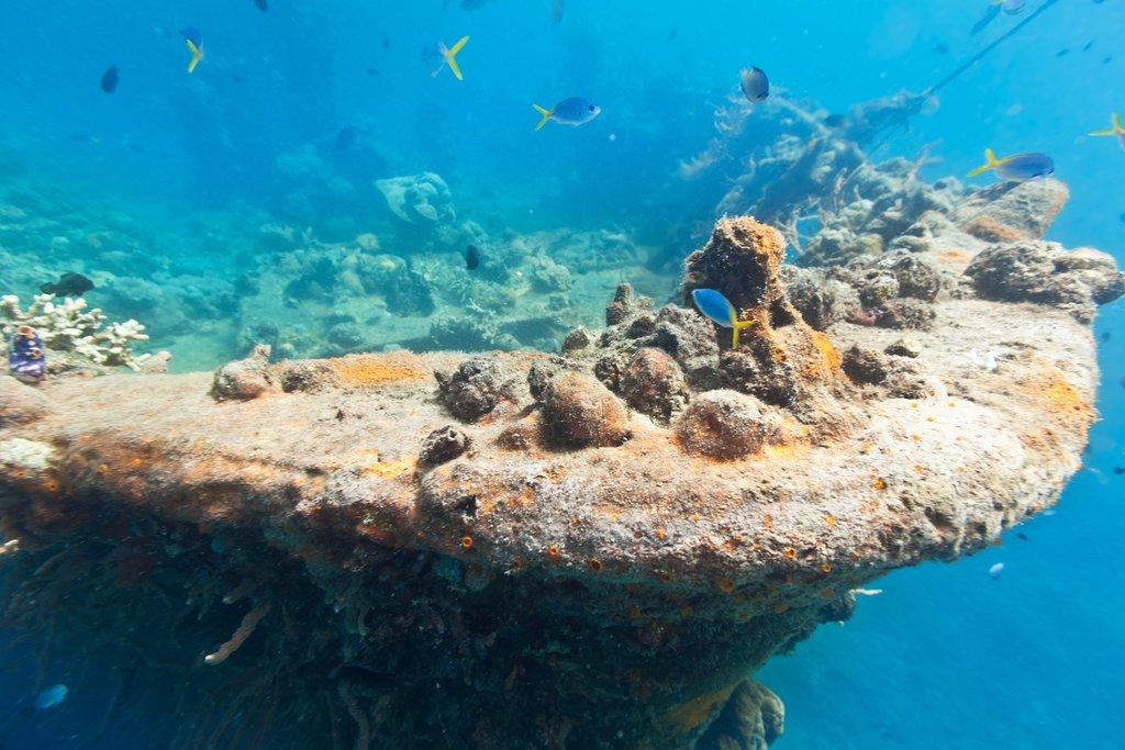 Lusong Gunboat Wreck