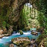 Forest Stream in Greece