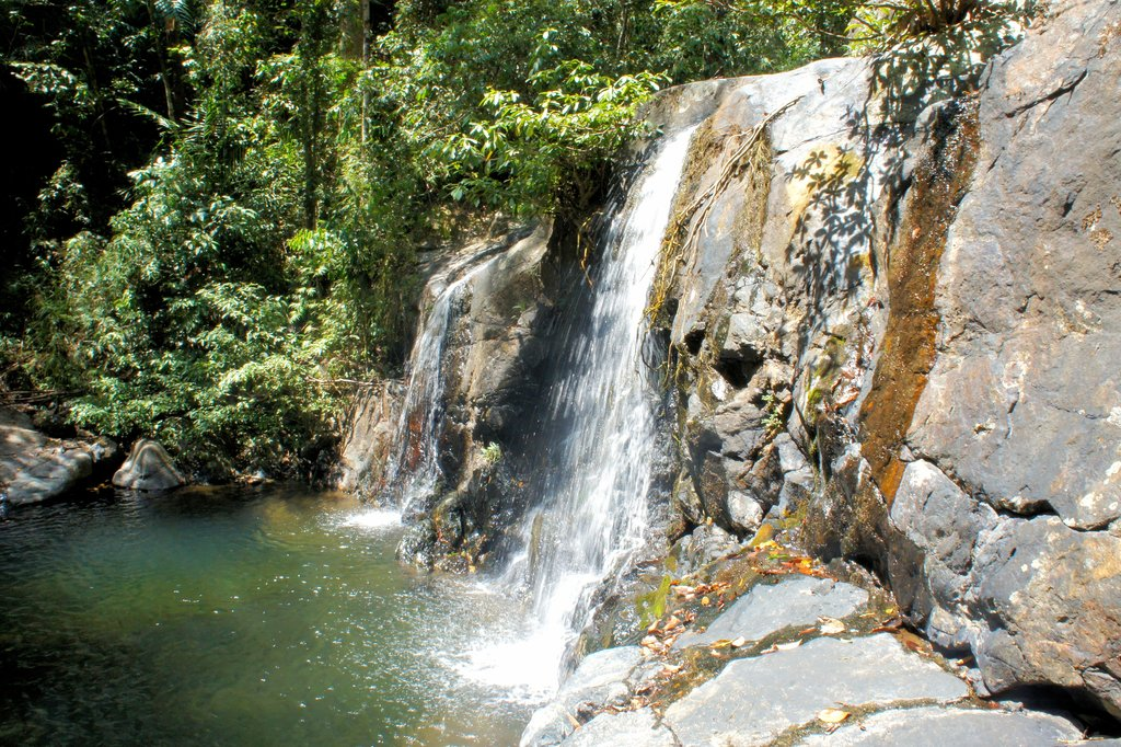 Small waterfall in jungle of Palawan