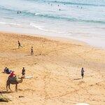 Explore the Beach Town of Agadir
