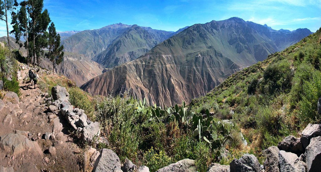 Dramatic scenery beckons at the Colca Canyon near Arequipa