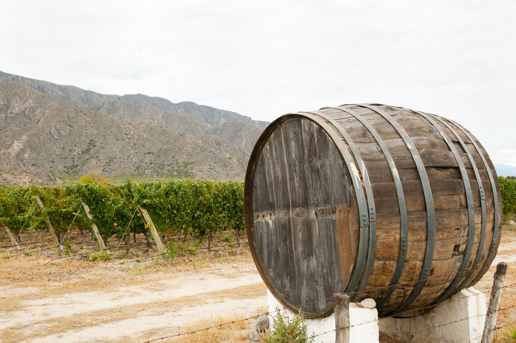 The wineries of Cafayate