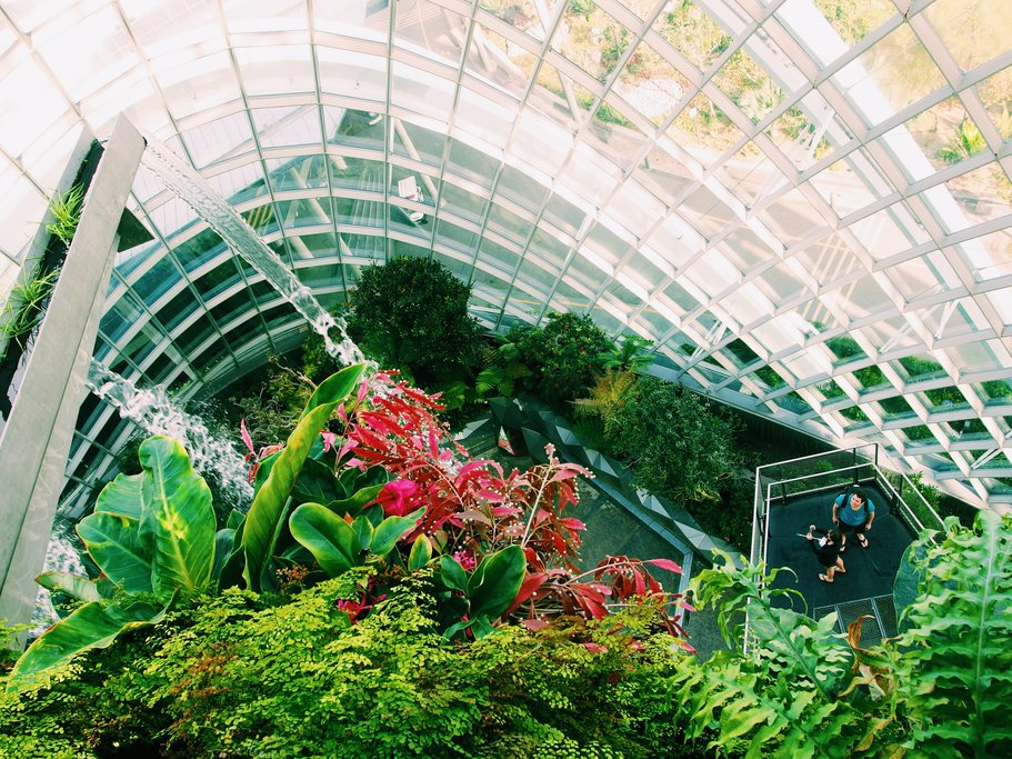 Singapore Botanical Garden is the only tropical garden to be a UNESCO World Heritage Site